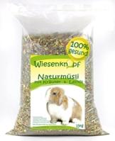 Wiesenknopf Kaninchenfutter