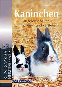 Kaninchen Buch *